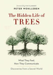 HiddenLifeTrees.jpg